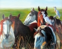David Dawson Wild horses