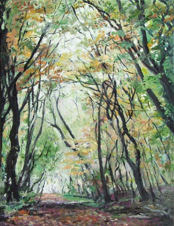 Keith Robinson 2.  Elloughtondale Woods
