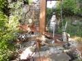 Mick Webb Zoo