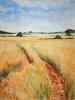 Walk-through-barleyweb.jpg