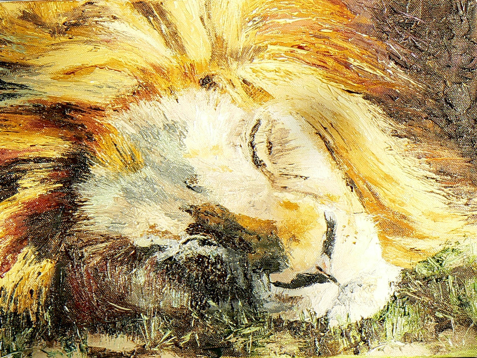 Phil Hargreaves Sleeping lion