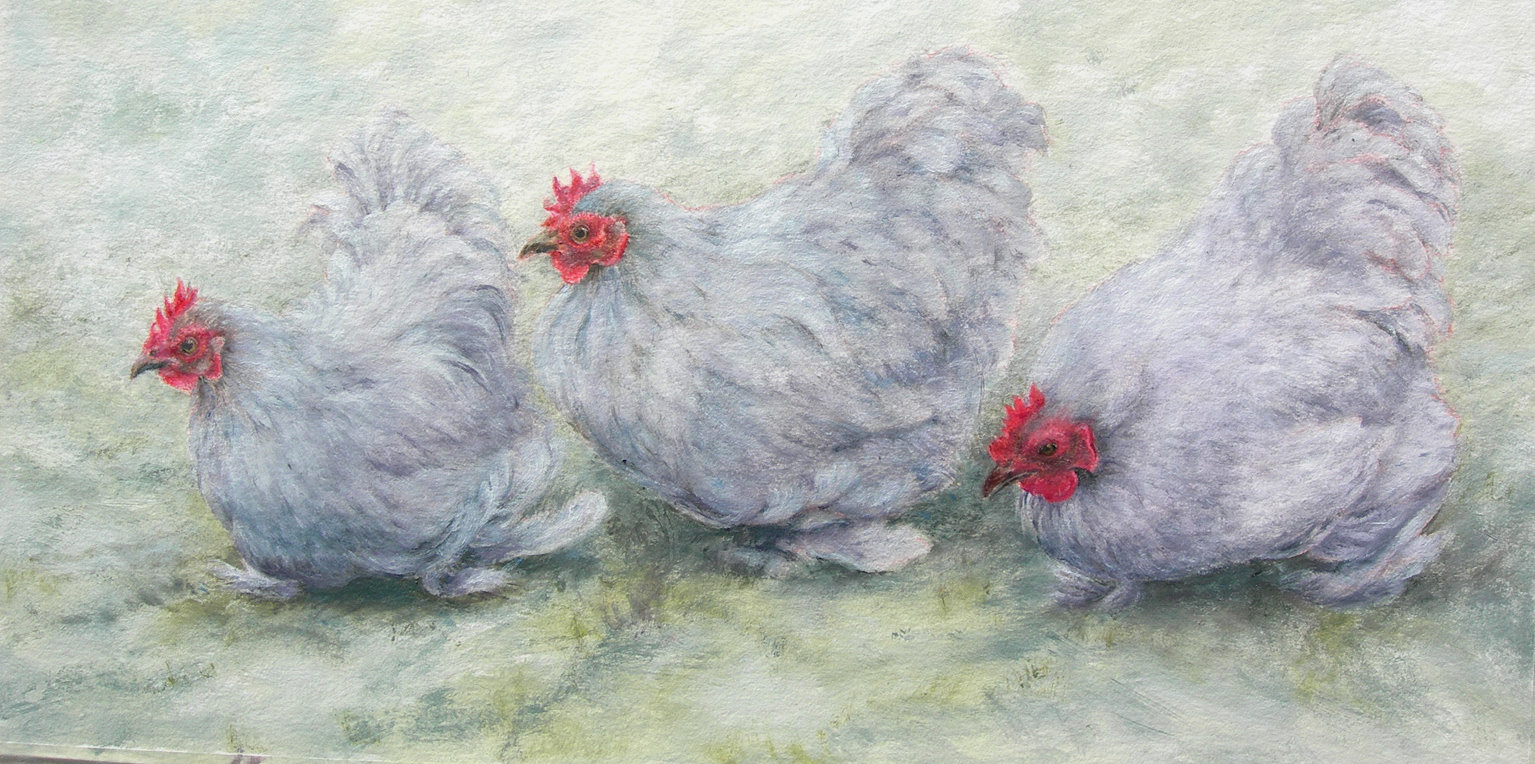 Fennell The Lavender Ladies